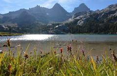 Sunny Lake Ediza (supersky77) Tags: california flowers summer lake reflection sunshine lago estate lac sierra fiori sole sierranevada highsierra anseladamswilderness riflesso castilleja ediza indiapaintbrush lakeediza piantbrush