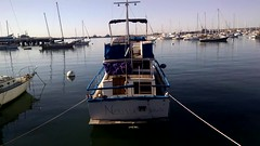 Bike ride 2 (EllenJo) Tags: california ca marina movie video sandiego action february bikeride sailboats movingpicture harbordrive 2015 ellenjo ellenjoroberts
