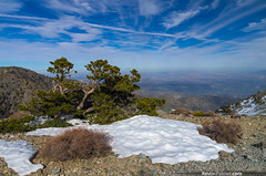 Above the Desert (kevin-palmer) Tags: california blue winter sky white snow view desert north scenic sunny southern february mountbaldy nationalmonument circularpolarizer treese sangabrielmountains losangelescounty kevinpalmer tamron1750mmf28 pentaxk5