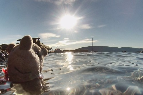 Adriatic Sea with Ringo in it
