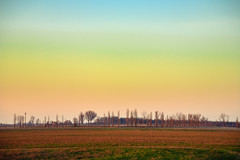 Delicate hues in the evening sky (Raoul Pop) Tags: travel trees winter sky italy colors grass europe italia seasons flat horizon places it powerlines rows somewhere ontheroad emiliaromagna