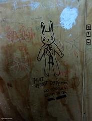 Bad Education (Marco San Martin) Tags: urban rabbit graffiti grafiti conejo elevator ascensor badeducation urbanculture urbanshot malaeducacion urbantribes marcosanmartin