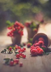 Les fruits rouges (RoCafe) Tags: fruits pentacon red stilllife berries kitchen pentacon50mmf18 nikond600 bokeh