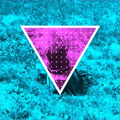 #aroundtheneighbourhood #thehiod #shape  #nature  #popart #indieart #indie  #digitalart #triangle #triangles #shapes #basicshapes (muchlove2016) Tags: nature triangles triangle digitalart shapes popart indie shape indieart aroundtheneighbourhood basicshapes thehiod