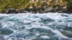 _DSC8517 (jerryho1212) Tags: nikon snow ho jerry hiniagara falls niagara d610 canada    wild lihsi          2485mm american river stream trail
