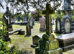 Cathays Cemetery, Cardiff [6] (All I want for Christmas is a Leica) Tags: panasoniclumixg3 panasoniclumix25mmf14 cathayscemetery cardiff graves graveyard cemetery colour