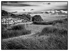 Evening at Sandvesanden (reidar.mydland) Tags: sandvesanden blackandwhite monochrome sand grass seascape karmoey clouds cliffs klipper