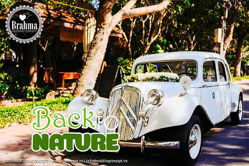 Braham-Wedding-Concept-Portfolio-Back-To-Nature-1920x1280-13
