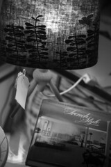 some light reading (ZedMacca) Tags: thetinroom lovatcollectables dirtyjanesmarket southernhighlands nsw 2016 canon5dmkii lamp french book bw coffeetable