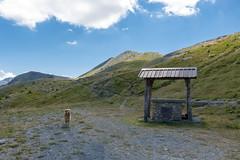 IMG_6674 (rickyrebora) Tags: col basset sauze doulx sestriere summer mountain montagna prati