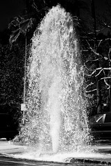 A water Christmas tree (J*D) Tags: fire hydrant water los angeles waterfountain accident leak