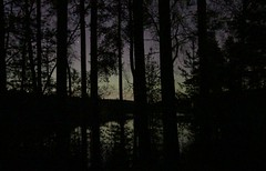 A very smal aurora ( OK, it's only airglow) behind the trees