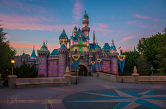 Pumpkins on the Castle (Domtabon) Tags: california castle dl dlr disney disneyland disneylandresort sleepingbeauty sleepingbeautycastle mousewait