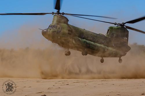 Dutch Chinook CH47-D