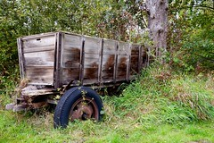 Old Wooden Cart (rustyruth1959) Tags: nikon nikond3200 tamron16300mm germany lowersaxony nabugutsunder naturereserve cart woodencart wood outdoor wheel tyre tree green trunk bark rust abandoned grass branch vehicle transport rot decay