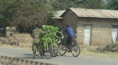 Bananas going to market in Arusha (janetfo747 ~ Thank You for the Views and Comments) Tags: african tanzania village smalltowns life culture daylight dress customs memories highlights ethnic culturaldiversity work herds water walk truckin shops stores donkeys houses
