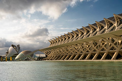 Valencia (Spain), City of Arts and Sciences (clodio61) Tags: calatrava candela europe spain valencia architecture arts building city cloud cloudscape color curve day destination exterior fisheye landmark modern outdoor park photography science tourist water