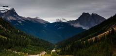 View of Emerald Lake Basin (jfusion61) Tags: canada canadianrockies yoho yohonationalpark emeral lake basin hike cloudy fall panorama nikon d810 landscape outdoor trees 2470mm