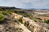Victoria Lines (sillie_R) Tags: coast defense malta military sea victorialines wall mgarr