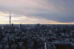 Morning Tokyo (a l e x . k) Tags: sky tree film skyline hotel tokyo pentax mandarin oriental mx fa43mmf19