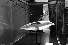 11 - Leonardo Da Vinci Exhibition: The Invention Nature (Gall Freitas  Photography) Tags: brazil art arte natureza exhibition gal leonardo paulo vinci so invention exposio gall freitas sesi gallerry inveno naturegaleria gallfreitas