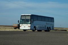 M&M Coaches Van Hool T2145 #44239 (sj3mark) Tags: vanhool motorcoach tourbus charterbus t2145 mmcoaches mmtours