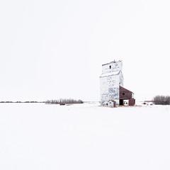 Alberta Pacific (Sandra Herber) Tags: winter snow canada high key alberta highkey minimalism minimalist grainelevator vegreville albertapacificgrain