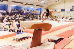 Championnat rgional PACA en AVIGNON 21 et 22/02/2015 (Alphagard) Tags: france ant competition avignon gam gaf provencealpesctedazur gymnova champfleury gymastique