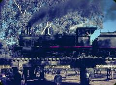 3144 on Trestle Bridge (oz_lightning) Tags: bridge people film transport tracks australia slide trains steam special nsw newsouthwales warren passenger halfframe aus olympuspen railways filmscan 3144 agfact18 canonpixmamg8150 railpage:class=357 rpaunswc30t rpaunswc30t3144 railpage:loco=3144