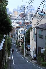 1 (Yorozuna / ) Tags: road morning japan tokyo earlymorning downhill  slope mejirodai  takada      fujimizaka      slopingroad    toshimaward bunkyoward