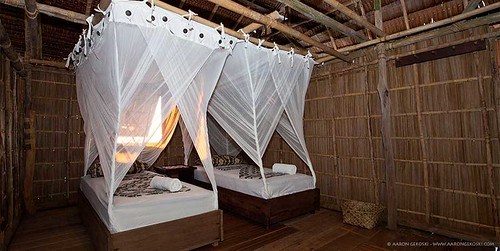 Papuan Cottage
