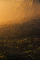 Sunrise Cemoro Lawang, Bromo (Mytruestory Photography) Tags: morning travel sky mountain nature vertical fog indonesia landscape outdoors island photography dawn volcano asia village cone hiking steam gas adventure climbing journey arrival damaged dramaticsky scenics tengger erupting 2016 volcaniccrater traveldestinations colorimage volcaniclandscape mountainpeak beautyinnature nationallandmark bromotenggersemerunationalpark mtsemeru eastjavaprovince sunrisedawn atmosphericmood mytruestoryphotography smokingactivity