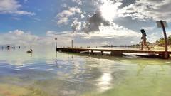 #GoPro #GoProMx #PhotoOfTheDAy #InstaGood #Me #Mxico #PicOfTheDay #InspiredByYou #BeAHero #GoProHero #GoPole #LoveToGoPro #GoProMoff #ab #FotoDelDa #MochileroMx #go_pro_life #VisitMexico #Cancun #RivieraMaya #Beach (abrahammojica1) Tags: rivieramaya fotodelda mxico mochileromx goprolife lovetogopro me cancun goprohero gopromoff gopole inspiredbyyou beahero gopromx beach gopro ab visitmexico picoftheday instagood photooftheday