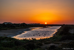 Atardecer en marismas de Carboneros (Miguel Sanchez Arteche) Tags: chiclana cadiz puestasdesol sunset sanctipetri chiclanadelafrontera andaluca espaa labarrosa playadelabarrosa