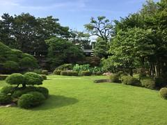 image (Stop carbon pollution) Tags: japan 日本 toukyou tokyo 東京 garden honshuu 本州 kantou 関東