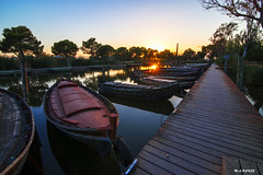 Water reflections (jopas2800) Tags: water river boats sunset tree sunny pine path blue orange shore albufera valencia espaa nikond610 tokina1628