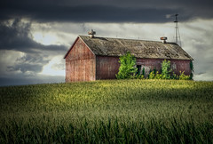 Just An Observer (henryhintermeister) Tags: barns minnesota oldbarns clouds farming countryliving country sunsets storms sunrises pastures nostalgia skies outdoors seasons mankato