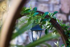 Lantern (Eklis273) Tags: laterne lantern bogen arc plant pflanze bltter leaves holz wood green grn lazise gardasee lagodigarda outdoor italy italien sonya6000 samyang