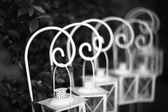 In a row (pierfrancescacasadio) Tags: swirlybokeh swirly wedding helios402 helios