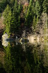 Berglsteinersee reflections (Wiesingerin1) Tags: trees lake water reflections tirol tyrol berglsteinersee wiesingerin1