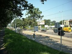 Bus / tram stop in Wrocaw (transport131) Tags: bus tram stop infrastructure przystanek infrastruktura