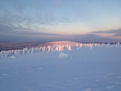 Laponie finlandaise (PierreG_09) Tags: finland hiver lapland neige finlande luosto laponie pascalbuinier
