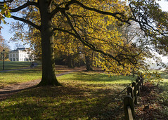Morning walk (PGKreling) Tags: morning autumn holland color fall early arnhem fresh