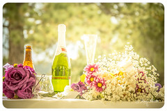 Wedding (Art + Photography = ArtOgraphy) Tags: flowers wedding summer cake colorado general photos ryan father stock daughter mother son ringbearer rings lillies bouquet waterfountain donovan mitzi ringexchange generic sparklingcider floatingcandles ringpillow champagnefountain augustbride rememberingfather mothergaveawaybride carrotweddingcake