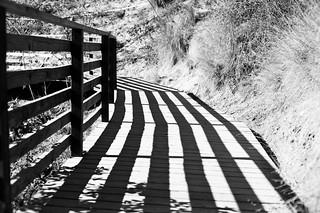 Runyon Canyon Trail Lines
