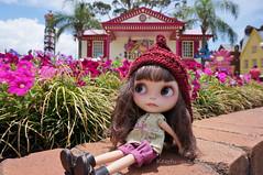 26 Nov 2014...........DreamWorld Amusement Park!!!