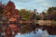 Whitehills Fall Pond Scene (matthewkaz) Tags: park autumn reflection fall colors pond michigan eastlansing 2014 whitememorialpark whitehillspark