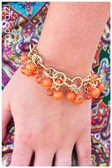 1077_br-orangekit1ajuly-box03
