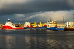 Harbour @ Christmas_