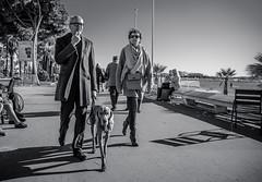 So Cannes #9 - Like master, like dog... (_Franck Michel_) Tags: shadow sea bw dog pet sun mer white soleil noir nb ombre thin et blanc classy chein blanck